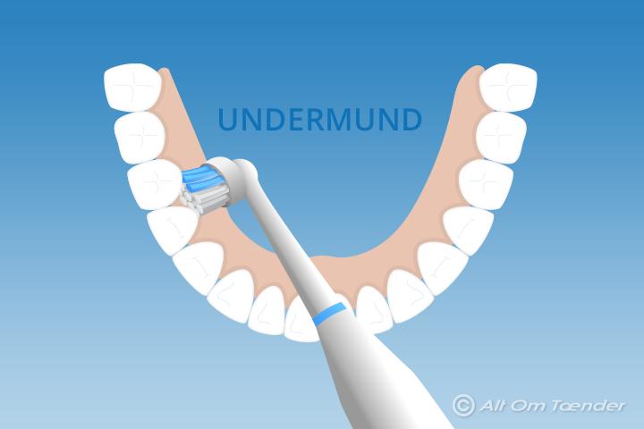 hvordan børster man tænder med elektrisk tandbørste