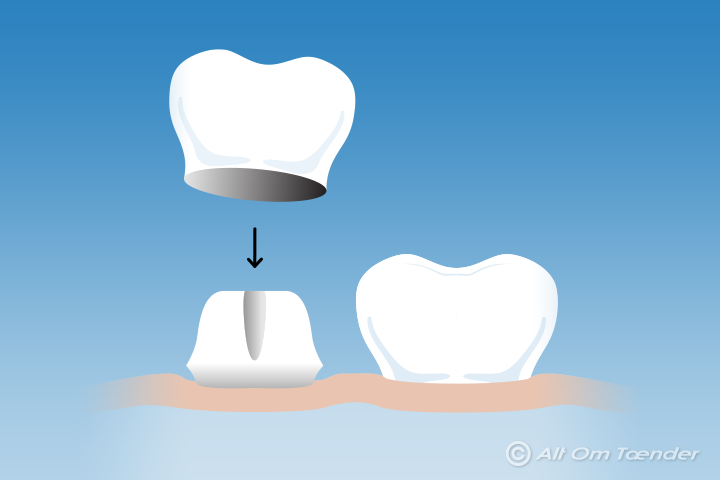 medlem af danmark tandlæge